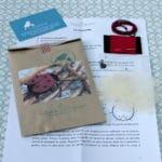 DSC_0408 kit coccinelle
