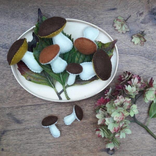 kit de la cueillette des champignons par Pique & Colegram